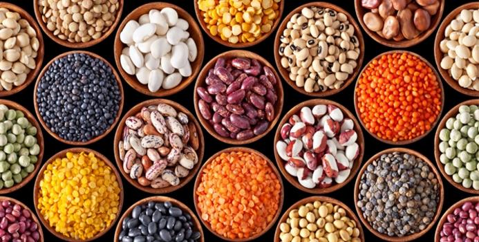 منابع پروتئین های گیاهی