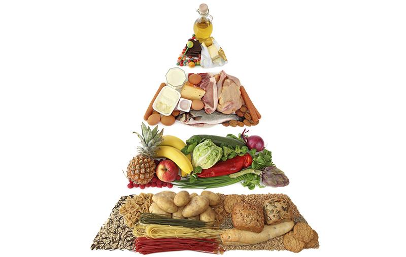 هرم خوراکی پروتئین های گیاهی و حیوانی