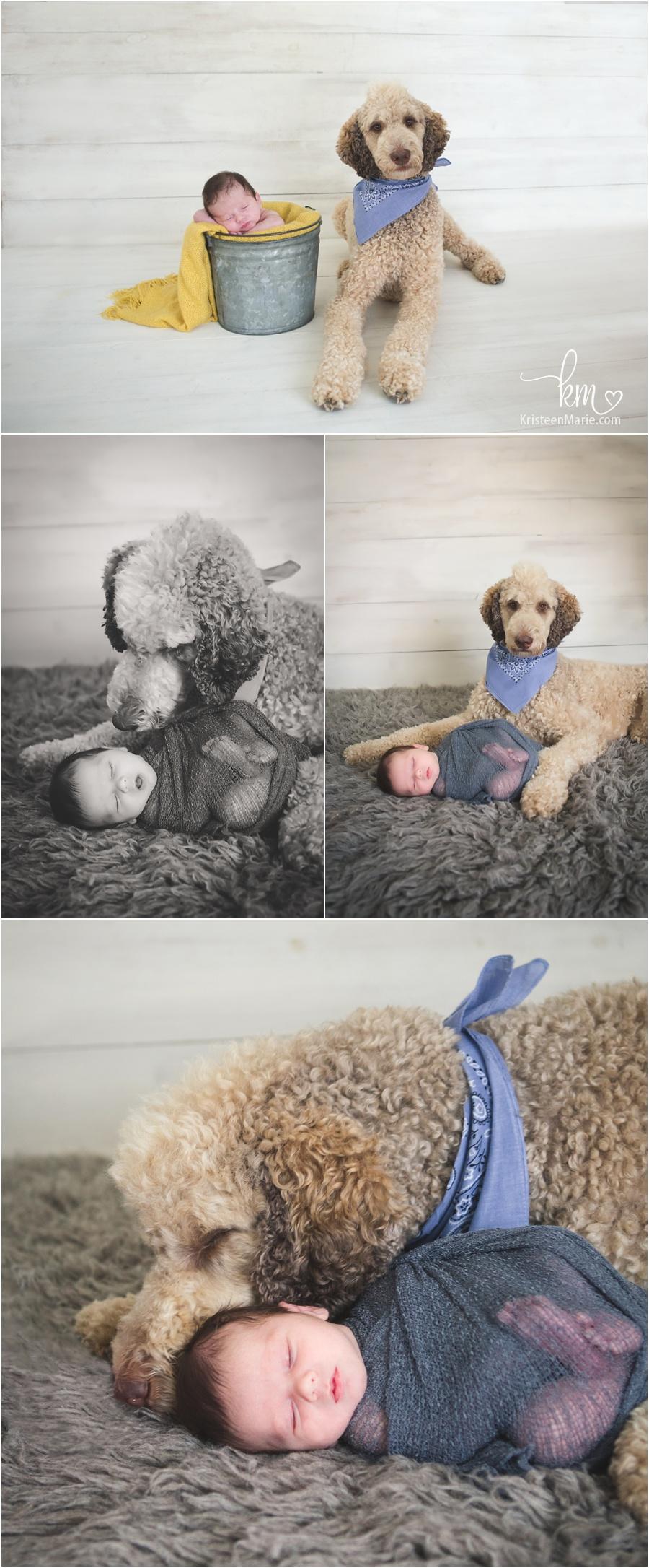 ایده عکاسی نوزادان