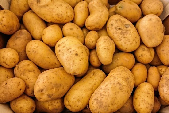 28. سیب زمینی- منبع پروتئین گیاهی