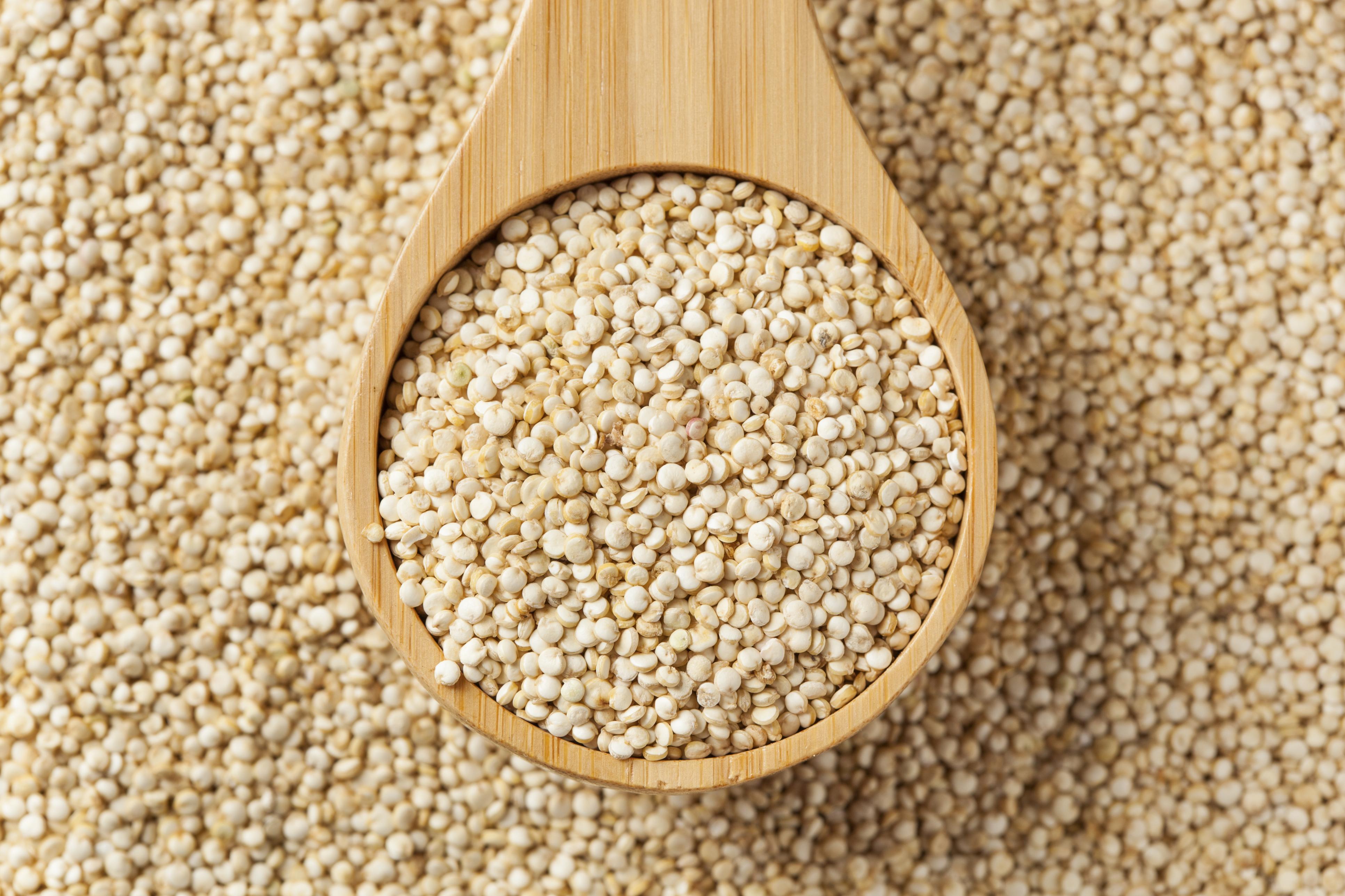 27. کینوآ- منبع پروتئین گیاهی