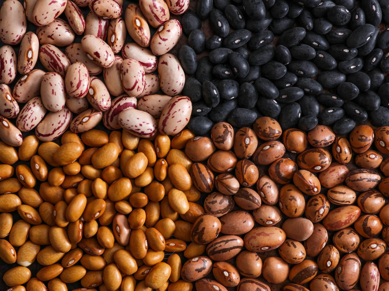 14. لوبیاها - منبع پروتئین گیاهی