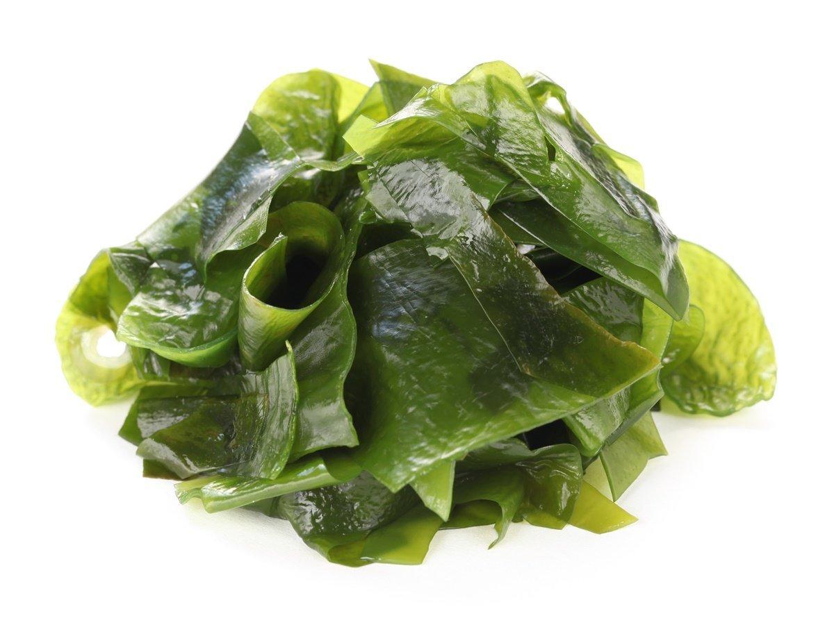 26. جلبک- منبع پروتئین گیاهی