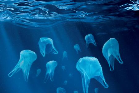 تصاویر آلودگی آب ها، خشکی ها و هوا توسط انسان