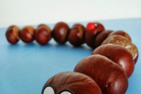 کار دستی کودکان - ساخت حیوانات مختلف با میوه