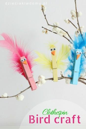 کاردستی ساخت پرنده های رنگارنگ با گیره لباس